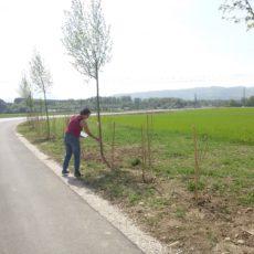 Kontrolle der Bepflanzung durch Paula Polak