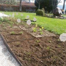 Bepflanzung des Steinzeitgartens in Attersee