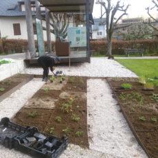 Die Anlage des Steinzeitgartens in Attersee
