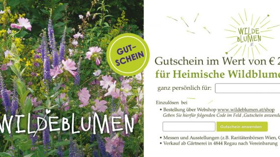 Freude schenken mit einem Wildblumen-Gutschein