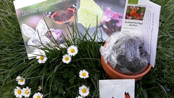 Starterset Schmetterlingsgarten für Kinder